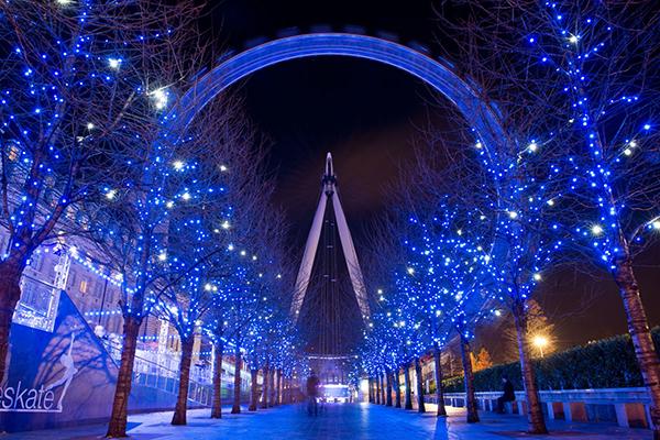 experience-christmas-lights