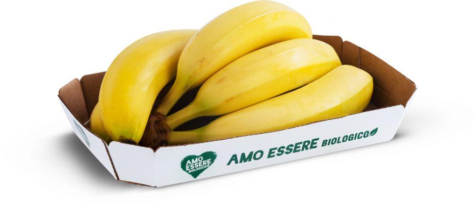 803467.1_Banane_BIO